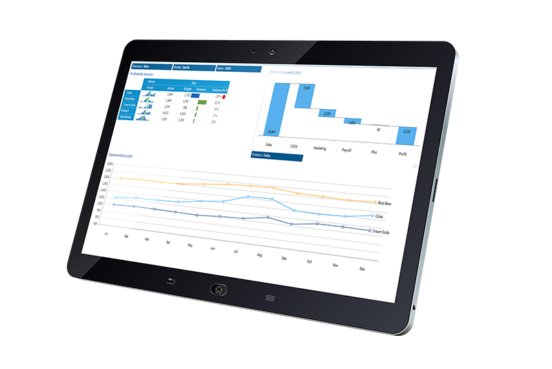 Serviceware Performance profitability analysis on tablet.